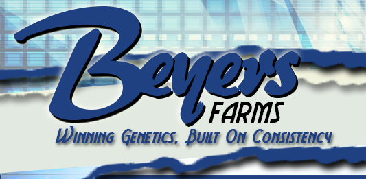 Beyers Farms : Sibley, IL